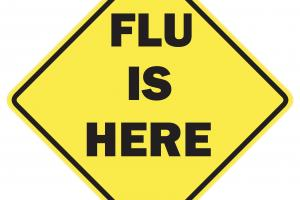 flu is here